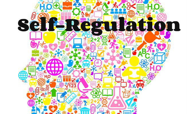 Technologically-enabled Mood Trackers Promote Self-Regulation-How?
