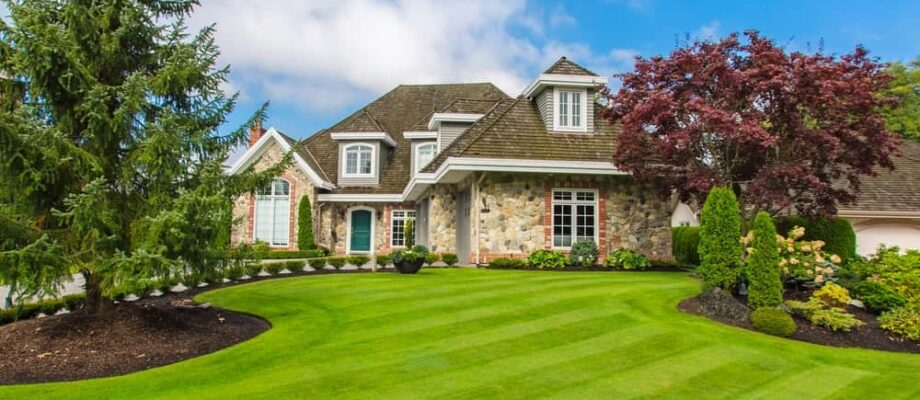 A Guide to Achieving the Perfect Lawn